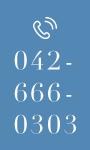 TEL:042-666-0303